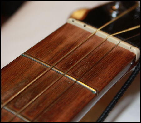 Guitar Fretboard Cleaning