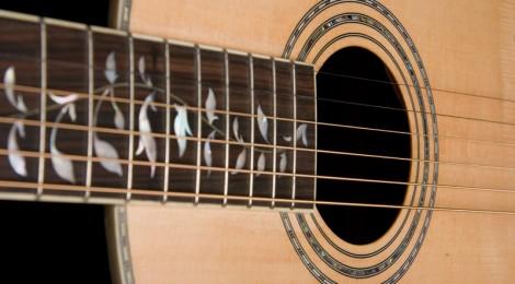 Washburn Vintage Series Acoustic Guitar R320SWR/R321SWR