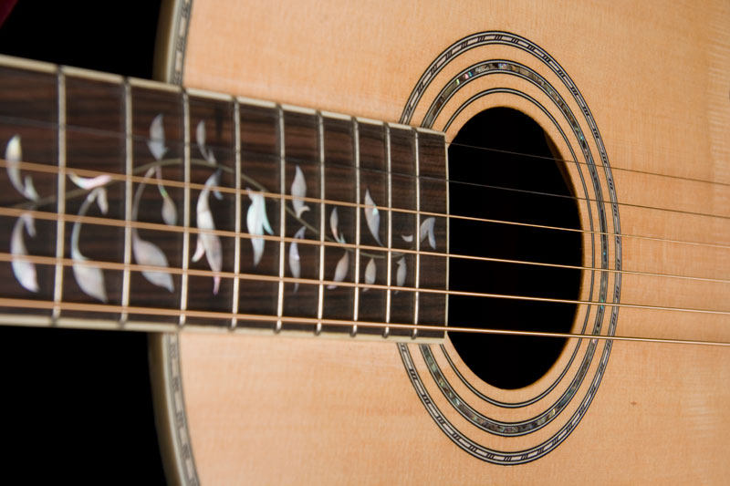 Washburn Vintage Series R320SWR Acoustic Guitar - 6